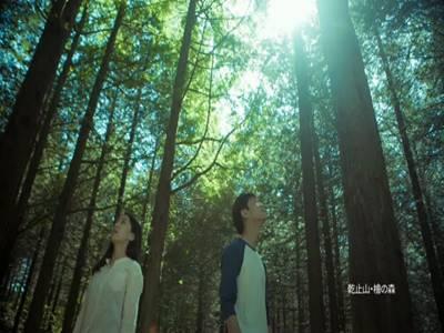 전주시 대표홍보영상 'The moments of Jeonju' (JPN)