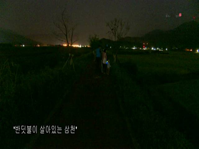 영상스케치 '반딧불이 살아있는 삼천'
